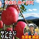 【ふるさと納税】青森県鰺ヶ沢町【りんご】 西樹園のサンふじ ...