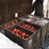 【ふるさと納税】風丸農場の雪室りんご