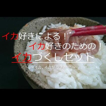 【楽天IT学校】鰺ヶ沢 生干しイカ、炭火焼きイカ、昭和の塩辛セット
