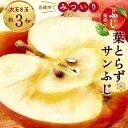 【ふるさと納税】ふじ発祥地産 葉とらずサンふじ 大玉 8個 ご家庭用 青森りんご【1102373】