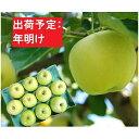 【ふるさと納税】年明け 贈答規格王林 約3kg(特A)【1月・2月・3月・青森りんご・JA津軽みらい(板柳)】 【果物類・林檎・りんご・リンゴ】 お届け:2022年1月25日〜2022年3月20日