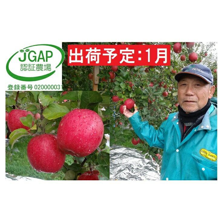 1月 家庭用 葉取らずサンふじ約10kg[訳あり]青森県産りんご [果物類・林檎・りんご・リンゴ] お届け:2021年1月10日〜2021年1月31日