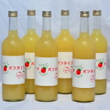 【ふるさと納税】三戸りんごジュース(藤原農園)