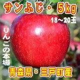 【ふるさと納税】三戸りんごサンふじ約5kg