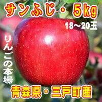 三戸りんご「サンふじ」18〜20玉 約5kg