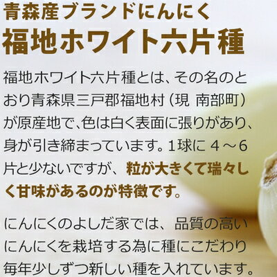 【ふるさと納税】青森県産「にんにく」最上級品【中サイズ・1kg】【2019年産先行受付】→→2019年8月から順次発送