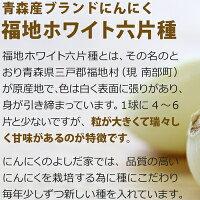 【ふるさと納税】青森県産「にんにく」最上級品【大サイズ・1kg】【2019年産】