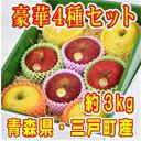 【ふるさと納税】豪華!【りんご4種・8玉】食べくらべセットサ...