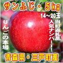 【ふるさと納税】りんご「サンふじ」14〜20玉 約5kg【1...