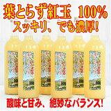 【ふるさと納税】葉取らずりんご【紅玉】100%使用りんごジュース720ml×6本