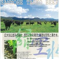 【ふるさと納税】黒毛和牛A4・B4等級以上「三戸田子牛」【肩ローススライス370g&サーロイン200g】