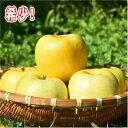 【ふるさと納税】希少!りんご「もりのかがやき」 12〜16玉...