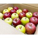 【ふるさと納税】「青森県五戸町産」 りんご詰め合わせ 5kg