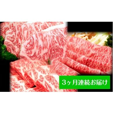 【ふるさと納税】田子牛贅沢セット 3ヶ月連続お届け 【定期便・ステーキ・お肉・牛肉・すき焼き】