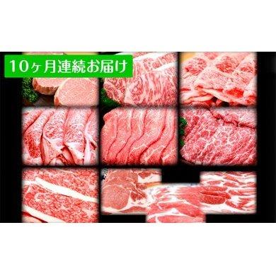 【ふるさと納税】田子牛・田子豚まるごと食べ尽くし 10ヶ月連続お届け 【定期便・お肉・牛肉・お肉・牛肉・肉の加工品】