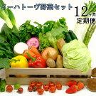 《定期便12ヶ月コース》イーハトーヴ野菜セット