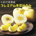 【ふるさと納税】岩手が生んだ最上級のりんご『プレミアム 冬恋...