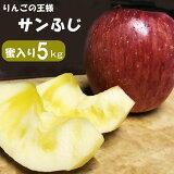 【ふるさと納税】りんごの王様 サンふじ 蜜入り 約5kg (14~20玉)訳あり 家庭用