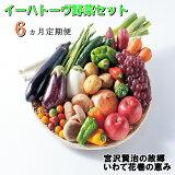 【ふるさと納税】《定期便6ヶ月》イーハトーヴ野菜セット お楽しみ 詰め合わせ 6回(7〜10品) 旬 野菜 冷蔵【予約受付2021年9月より発送開始】