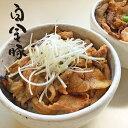 【ふるさと納税】白金豚(プラチナポーク)特製たれ漬け 500...