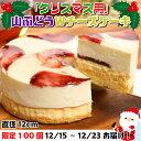 【ふるさと納税】限定100セット!クリスマスver【いわて・久慈 山ぶどうの里から】山ぶどうWチーズケーキ(直径12cm) その1