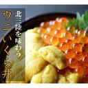 【ふるさと納税】N004 北三陸の贅沢うにいくら丼セット