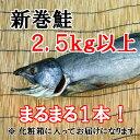 【ふるさと納税】H-016 【1本まるまる】新巻鮭(2.5キ...