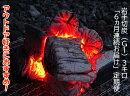 【ふるさと納税】【定期便】アウトドア・BBQ大好き!6ヵ月連続でこだわり木炭をお届け定期便