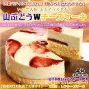 【ふるさと納税】【敬老の日仕様】山ぶどうWチーズケーキ(4号:直径12cm)