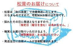 【ふるさと納税】「訳あり:規格外品」【季節限定】久慈産天然松茸 200g 画像1