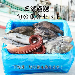 【ふるさと納税】海産物 魚介類 詰め合わせ セット≪特選≫三陸 海の恵み 鮮魚 下処理 直送 海藻 刺身 切り身 魚 さんま タコ