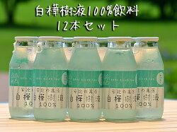 【ふるさと納税】白樺樹液