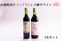 【ふるさと納税】八幡平ワイン『輝』&山葡萄果汁『こすず』セット