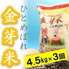 【ふるさと納税】☆全3回お届け頒布☆平成29年産金芽米ひとめぼれ4.5kg