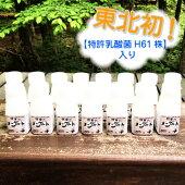U-002松ぼっくり「飲むヨーグルトセット」150ml×15本