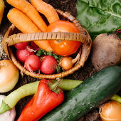 AF-008雫石産「季節野菜とドレッシング」詰め合わせ【充実の家サラダ】
