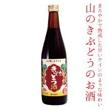 【ふるさと納税】No.022山のきぶどう酒500ml