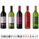 【ふるさと納税】自園自醸ワイン紫波辛口5本セット
