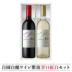 【ふるさと納税】自園自醸ワイン紫波甘口紅白セット