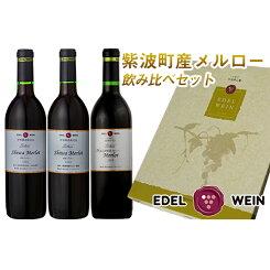 【ふるさと納税】4204エーデルワイン紫波町産メルロー飲み比べセット