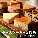 【ふるさと納税】チーズケーキ専門店の 6種類の詰合わせ