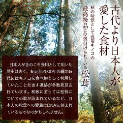 【ふるさと納税】天然松茸 約250g(予定) 画像1