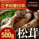 【ふるさと納税】岩手県産天然松茸 約500g