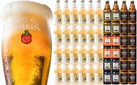 【ふるさと納税】ドライサイダークラフトビール詰合せ48本