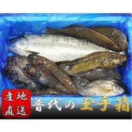 【ふるさと納税】マルサ嵯峨商店海の幸3本セット