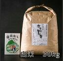 【ふるさと納税】田伝むしのササニシキ白米30kg(農薬:栽培...