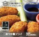 【ふるさと納税】【特大】三陸生牡蠣フライ