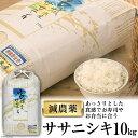 【ふるさと納税】令和2年 宮城登米産 減農米「ササニシキ」10kg