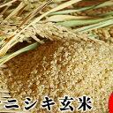 【ふるさと納税】【令和元年産】宮城県白石市産 ササニシキ玄米...