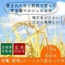 【ふるさと納税】【年6回隔月お届け!】平成30年度産新米! ...